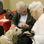 Seniors Fair 107 web