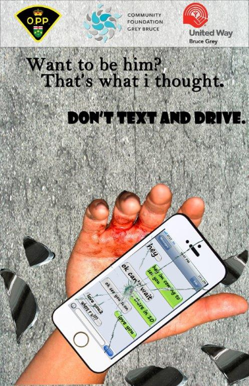 distracted driving poster - the winner - web